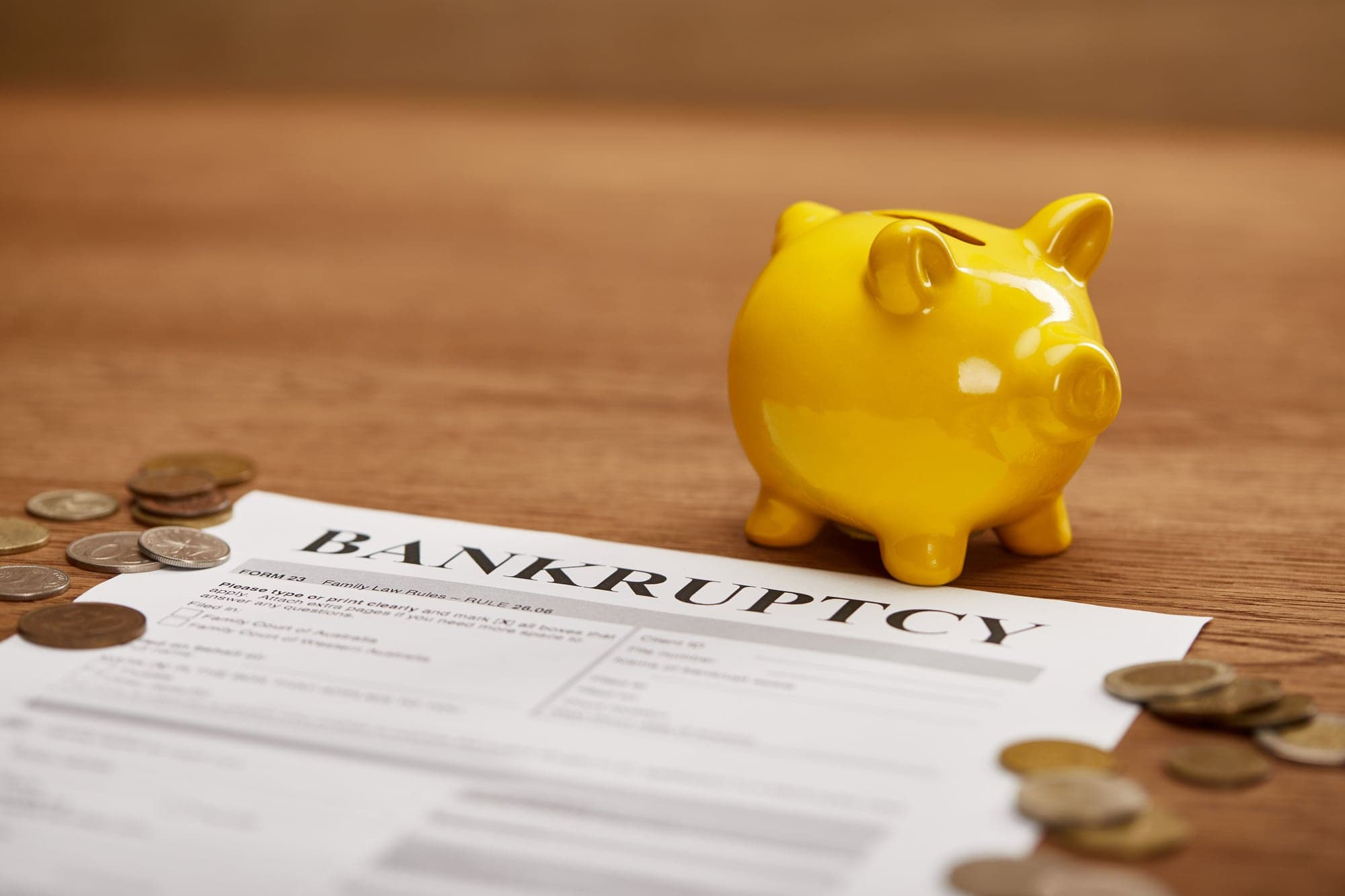 bankruptcy chapter 7 cost